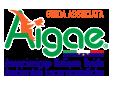 AIGAE